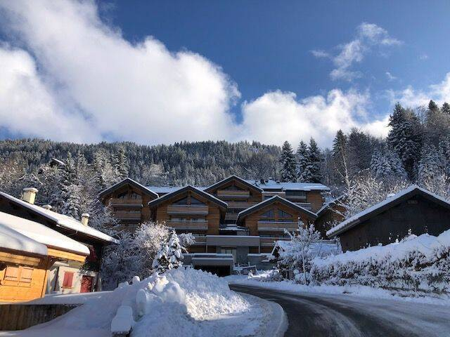 LE GRAND CERF Chalet in Les Carroz