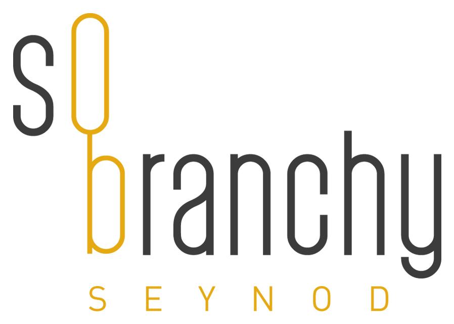 so branchy programme neuf 224 seynod 74600 39 appartements du t4 au t4 224 partir de 0